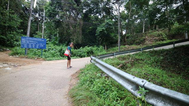 เดินป่า เกาะพีพี