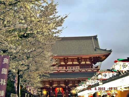 โตเกียว8