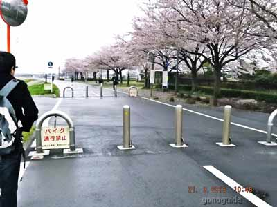 เที่ยวโตเกียว-199