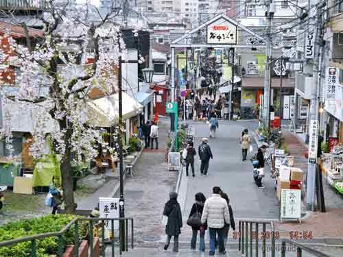 เที่ยวโตเกียว-224