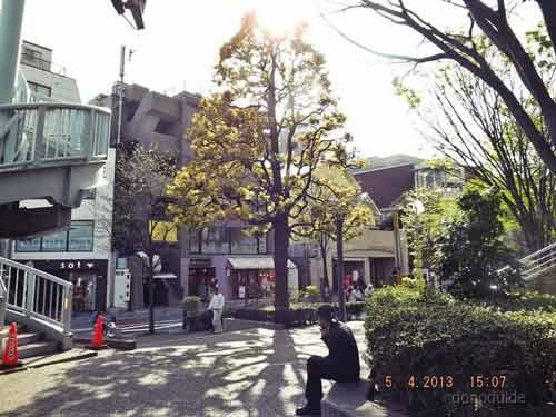 เที่ยวโตเกียว-403