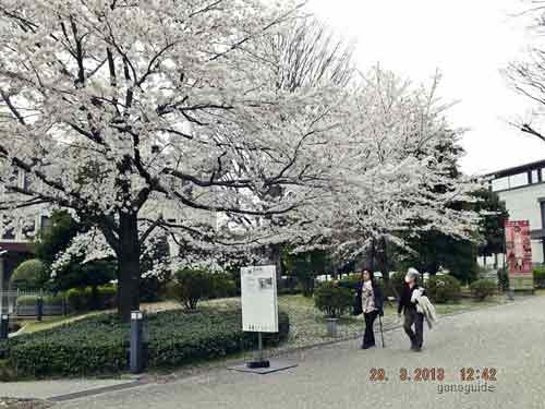 เที่ยวโตเกียว-97