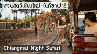 chiangmai-Night-safari
