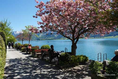 เที่ยวยุโรป SS1 D21 เที่ยว Lake Wolfgang