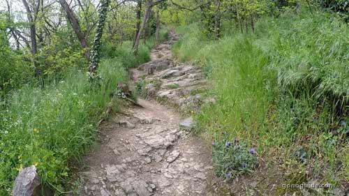 ทางเดินขึ้น Ruins Duernstein